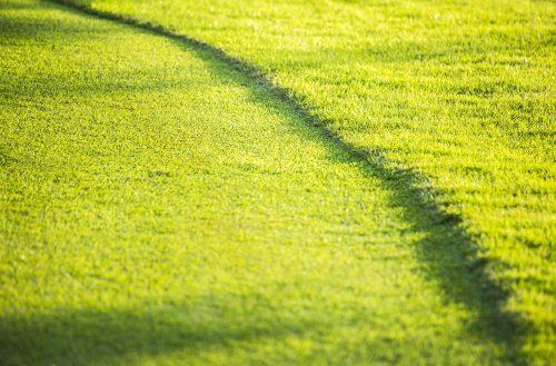 The Best Beginner Golf Balls